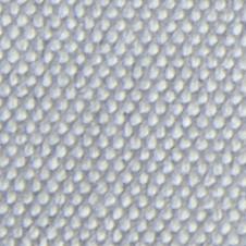 chenillas-coralia-1