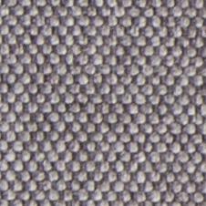 chenillas-coralia-12