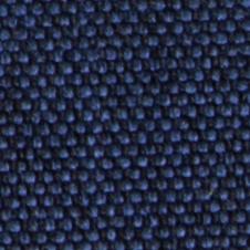 chenillas-coralia-18