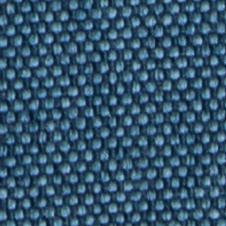 chenillas-coralia-20