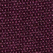 chenillas-coralia-24