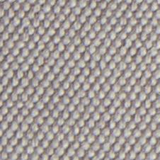 chenillas-coralia-3