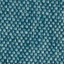 chenillas-coralia-31