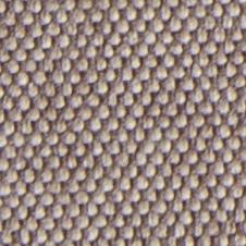 chenillas-coralia-6